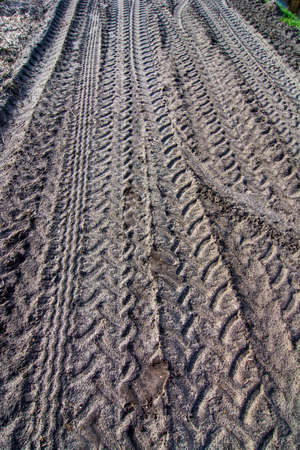 sandy soil: print of tractor tires in mud Stock Photo