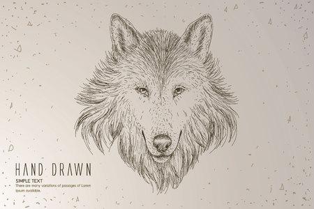Wolf head. Hand drawn vintage illustration. Illustration