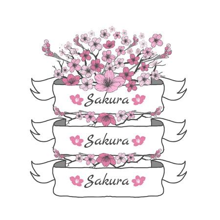 さくらの花のリボン。図面と白い背景の上のスケッチ。