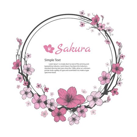 さくらの花のフレーム。図面と白い背景の上のスケッチ。