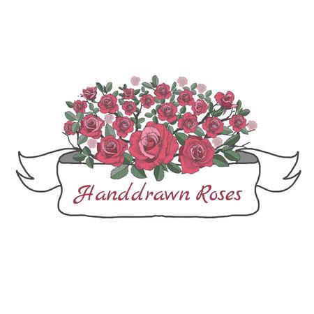 薔薇の花のリボン白い背景に描画してスケッチします。