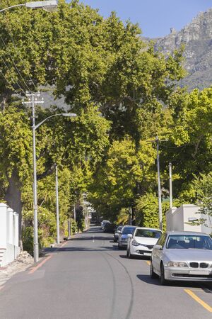 Street in the town of Claremont, Cape Town, South Africa. Sunny weather in the summer.