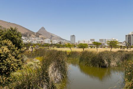 Green Point Park, mountain panorama with lake or river in Cape Town, South Africa.