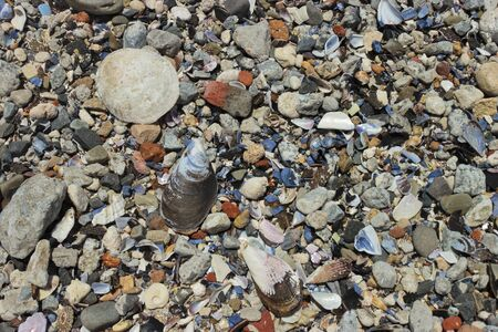 Texture of seashells, beach sand and stones. Sea Point promenade, Cape Town. Stock Photo