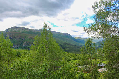 Beautiful Norwegian landscape with trees firs mountains and rocks. Norway Nature. 版權商用圖片
