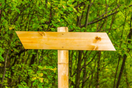 Signposting on the hiking trail in nature and forest landscape of Norway.
