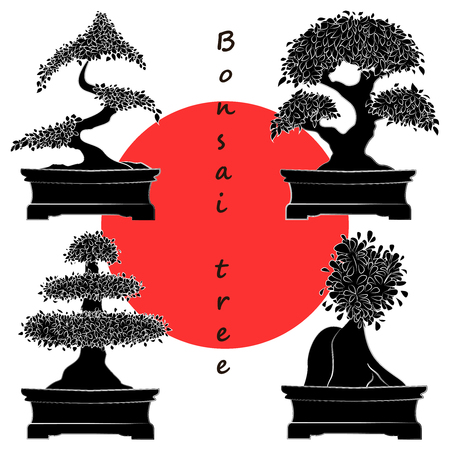 bonsai: Set of Black Bonsai Trees.