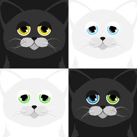 snoot: Four cats muzzle in a cartoon style Illustration