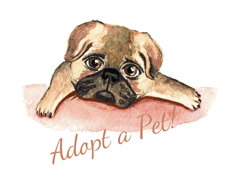 adoption: Dog watercolor. Adopt a Pet. Dog adoption concept. Stock Photo