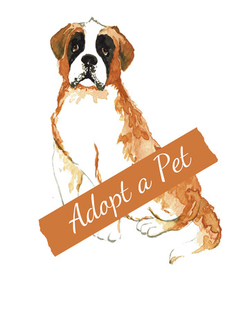 bernard: Bernard watercolor. Do not shop, adopt. Dog adoption concept.
