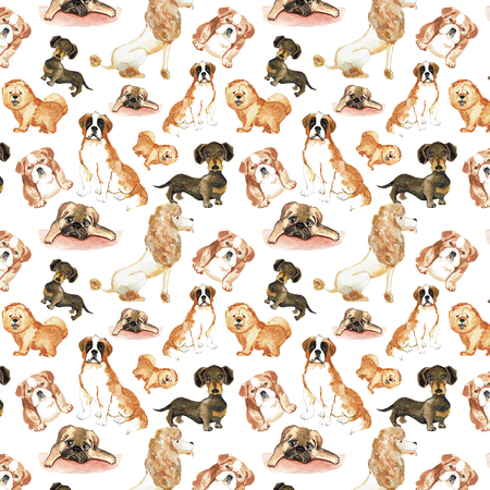 st  bernard: Pattern with dogs: St. Bernard dog, dachshund, chow chow poodle pug. Hand drawing watercolor Stock Photo