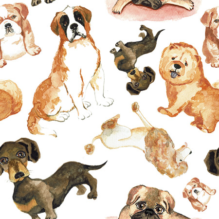 st  bernard: Seamless pattern with dogs: St. Bernard dog, dachshund, chow chow, poodle, pug Hand drawing watercolor Stock Photo
