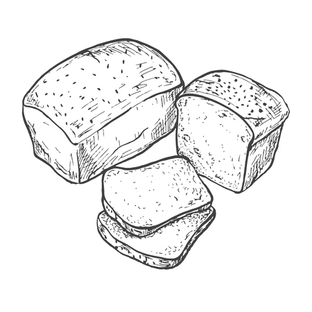 Rectangular loaf of bread. Sliced bread. Vector illustration of a sketch style. Illustration