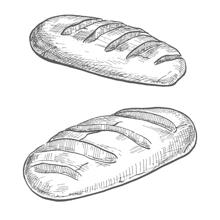 Two loaves isolated on white background. Vector illustration of a sketch style. Illustration