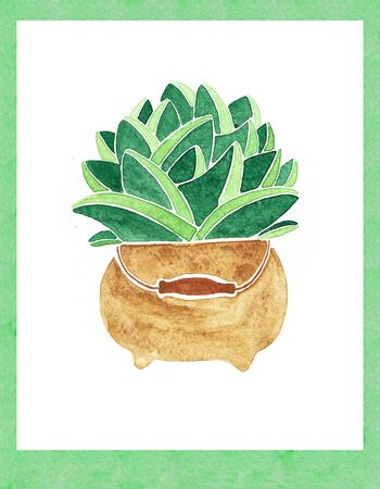 Plants in pots. Flowers in a vase. Watercolor hand drawn illustration.