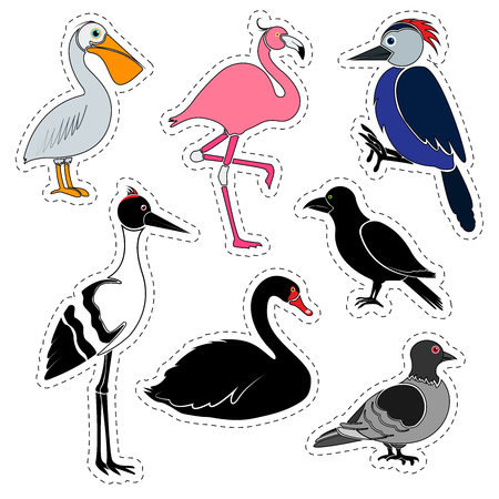 Set of stickers, Different birds isolated on white background.