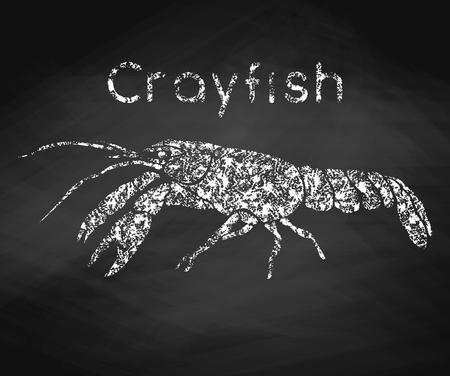 Crayfish drawn in chalk on a chalkboard. Vector illustration. 向量圖像