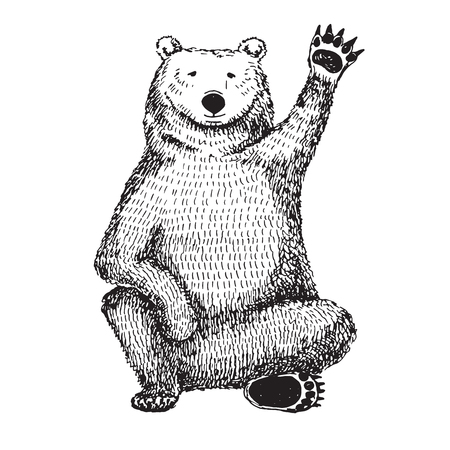 Sketch of a waving bear. Vector illustration.