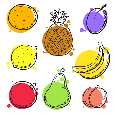 Different fruits in doodle style. Vector illustration
