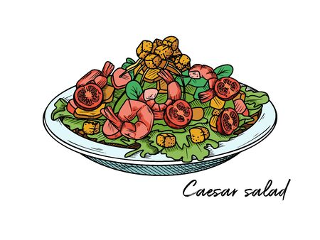 Caesar salad with shrimp isolated on a white background. Sketch Italian dishes. Vector illustration in sketch style. Ilustração