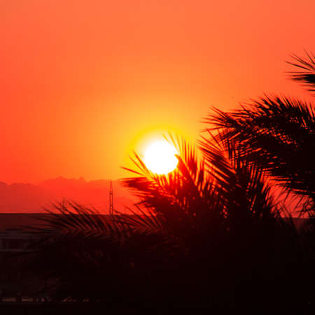 mountings: Red sunset in a desert.