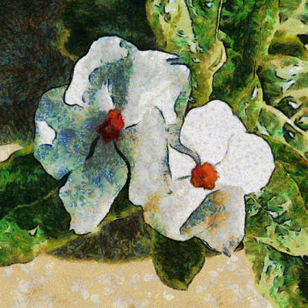 van gogh: Two white flowers. Drawing in Vincent van Gogh style.