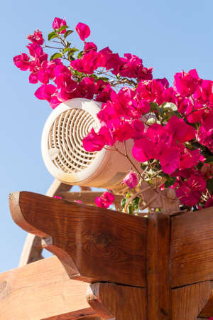 pergola: Outdoor loudspeaker among red flowers on a pergola top in a garden.