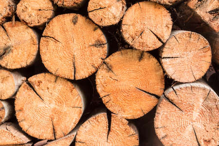 stack of firewood: Some fir firewood in stack.