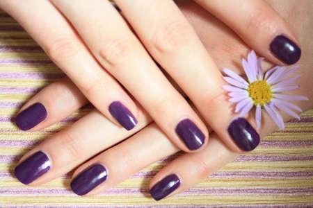manicure nails: manicure Stock Photo