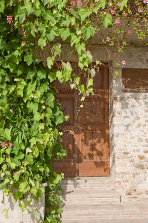 traditional climbing: Door of a traditional house with window and climbing plants Stock Photo