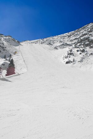 ski runs: View of an alpine ski run
