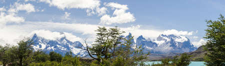 Green trees against a background of beautiful mountain picks in Torres Del Paine National Park in bright sunny day in summer, the Andes, Chile Stock Photo