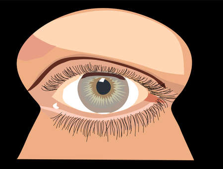 the human eye sees in the keyhole Vector