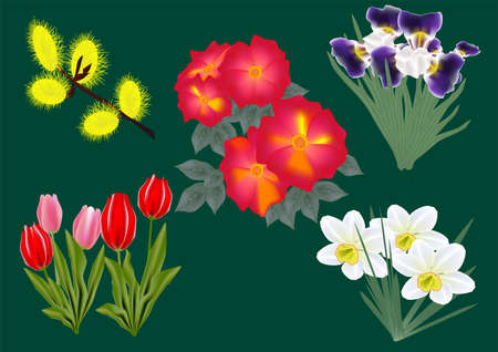 Set of 5 colors of spring. Mesh Stock Vector - 13513027