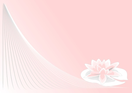 pink lotus on pink background with a spiral Vector