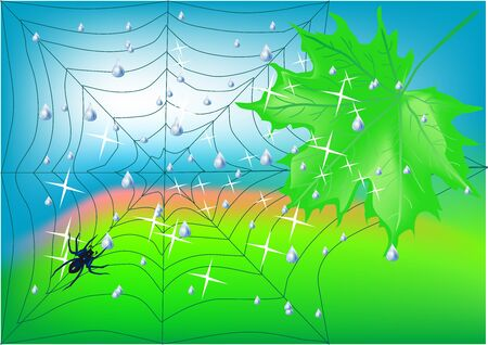 spiderweb, maple leaf against the blue sky