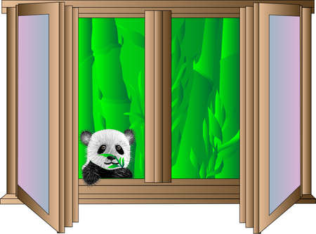a young panda bear looking out the window of the apartment from bambo Stock Vector - 14781822