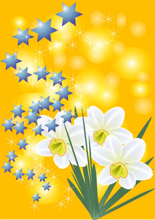 narcissi and blue stars on the orange background Vector