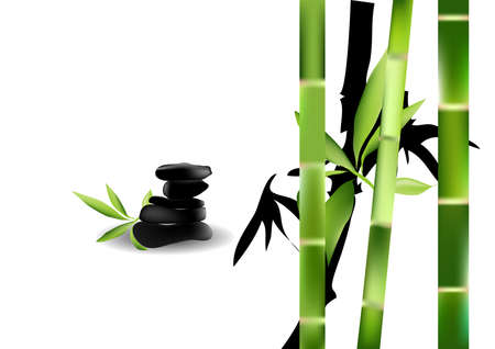 zen stones and bamboo isolated on white background Stock Vector - 15859950
