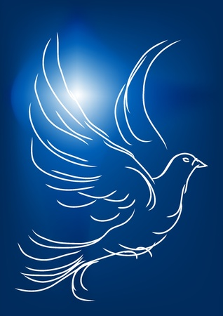 white dove in a blue sky  symbol of peace and love