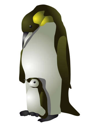 emperor: emperor penguin isolated on the white background Illustration