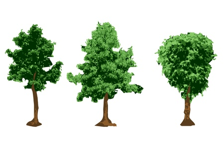 urban trees silhouettes isolated on white background Vector