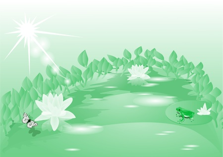 anuran: morning on the lake with blooming lotuses