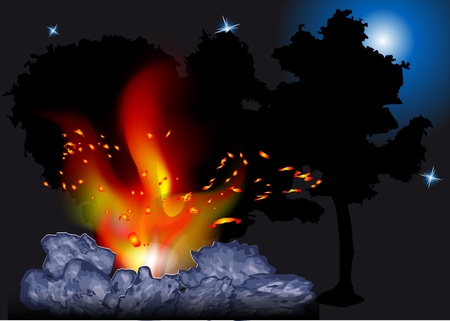 night bonfire in the forest Stock Vector - 20978851