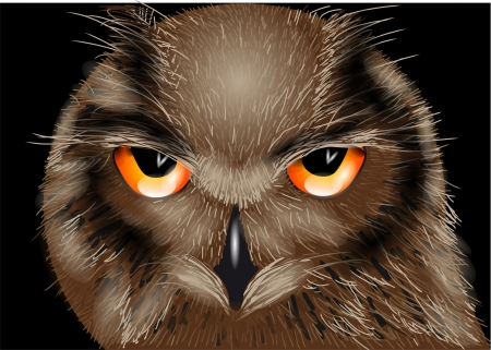 the owl isolated on the black background Stock Vector - 21306696