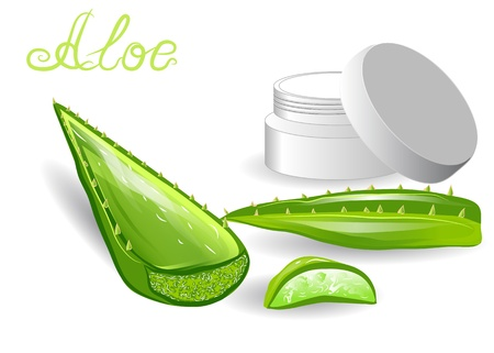 aloe leaves and cream isolated on white Vector