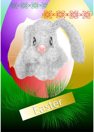 rabbit on a green grass   Stock Vector - 24798407