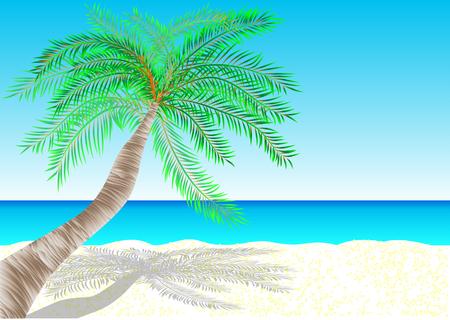 sand beach: bahamas  tropical white sand beach  10 EPS