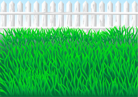 secluded: garden grass and white fence  10 EPS