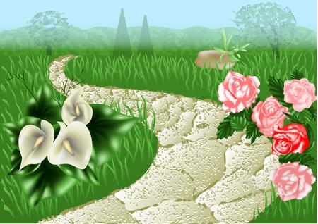 garden path: garden path between the  flowers and grass Illustration